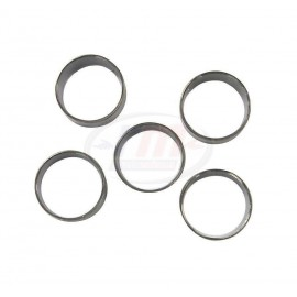 KIT BEARING CAMSHAFT 454 GEN. V