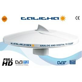 TALITHA - TV - 26 DB