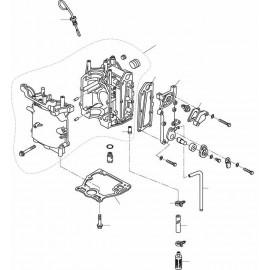 4 TIEMPOS 8 9,9 CV (209 cc)